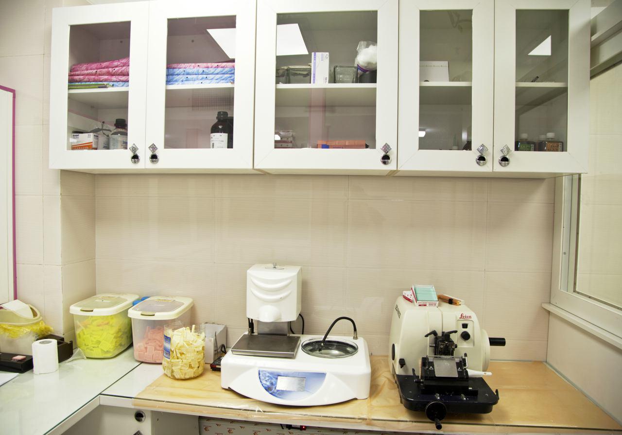 آزمایشگاه تشخیص طبی و پاتوبیولوژی دکتر علیجانی